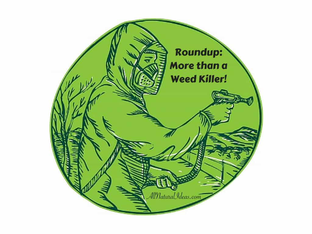 Roundup has been widely used since first introduced in the 1970s by Monsanto. We are now discovering Roundup effects on environment and health.