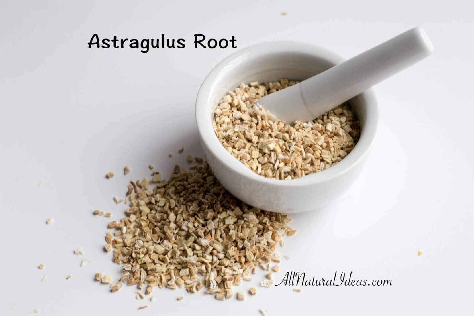 Astragalus root: a natural immune system booster