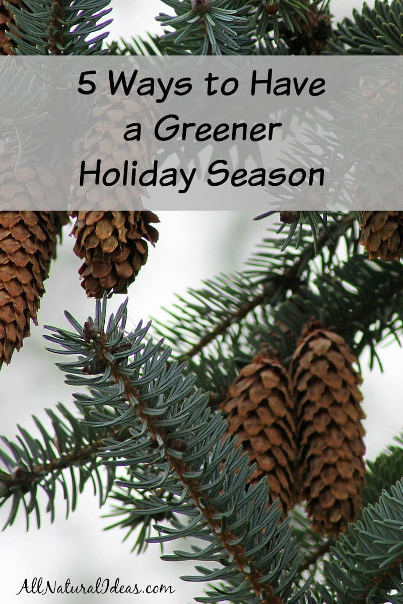Looking to reduce carbon footprint this upcoming holiday? We all want to be greener and here are 5 easy ways to have a greener holiday season!