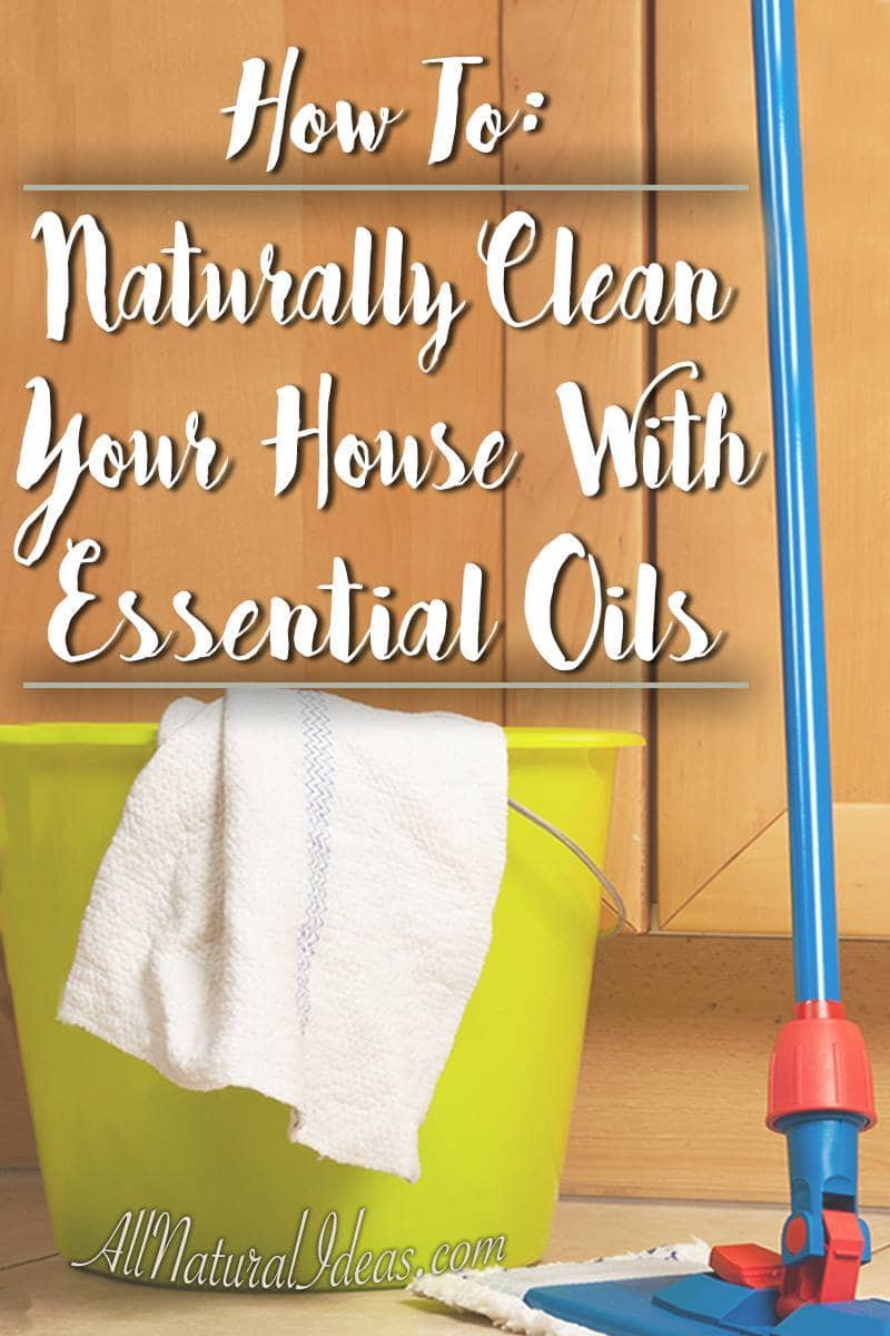 Many essential oils have antibacterial qualities which make them ideal for cleaning your home! Natural cleaning with essential oils can also save money.