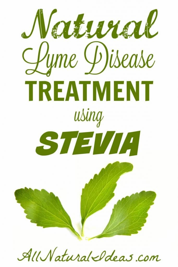 Best All Natural Stevia