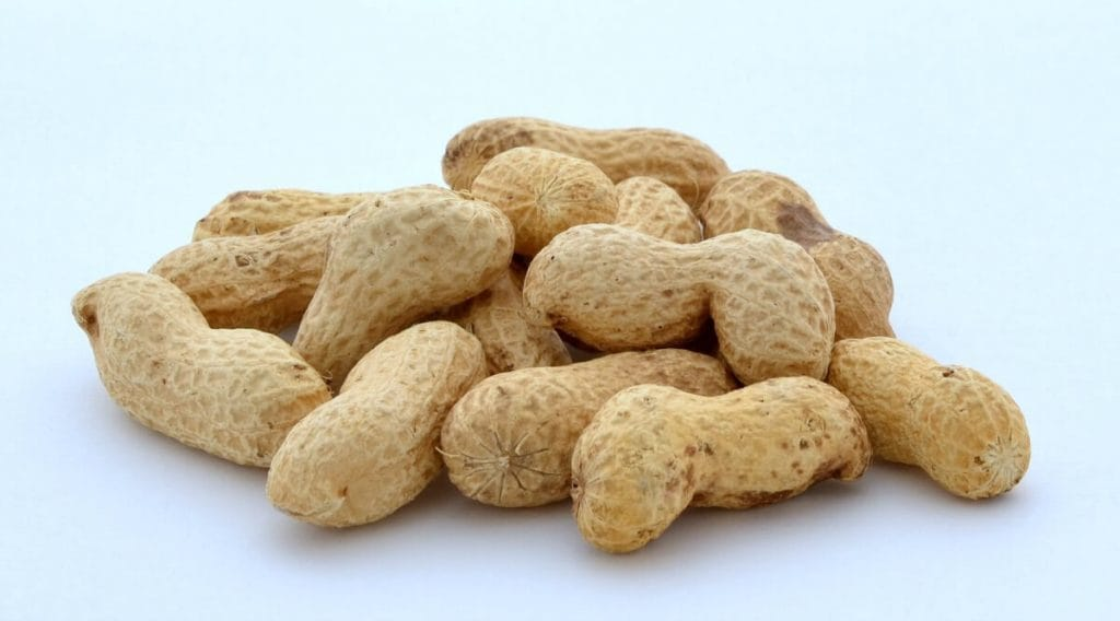 There is so much conflicting information about peanuts. Are peanuts good or bad for you? Here's what we found so you can decide. | allnaturalideas.com