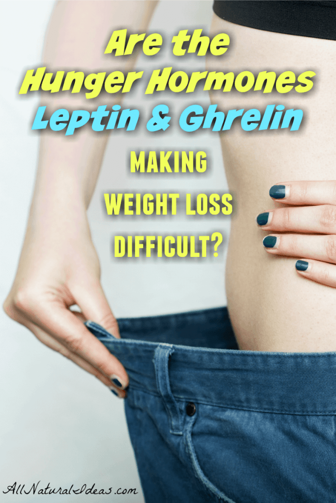 Hunger hormones leptin and ghrelin can make weight loss difficult. Getting control of your hunger is important if you want to keep weight off. | allnaturallideas.com