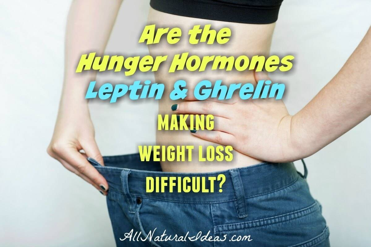 Hunger Hormones Leptin and Ghrelin | All Natural Ideas