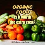 Why Is Organic Food More Expensive?