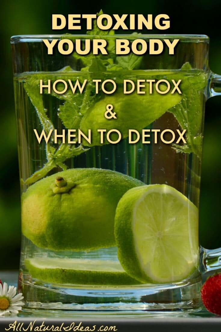 How do you know when it's time to detox? Let's take a look at some signs that you are in need of detoxing your body to improve health and wellness. | allnaturalideas.com