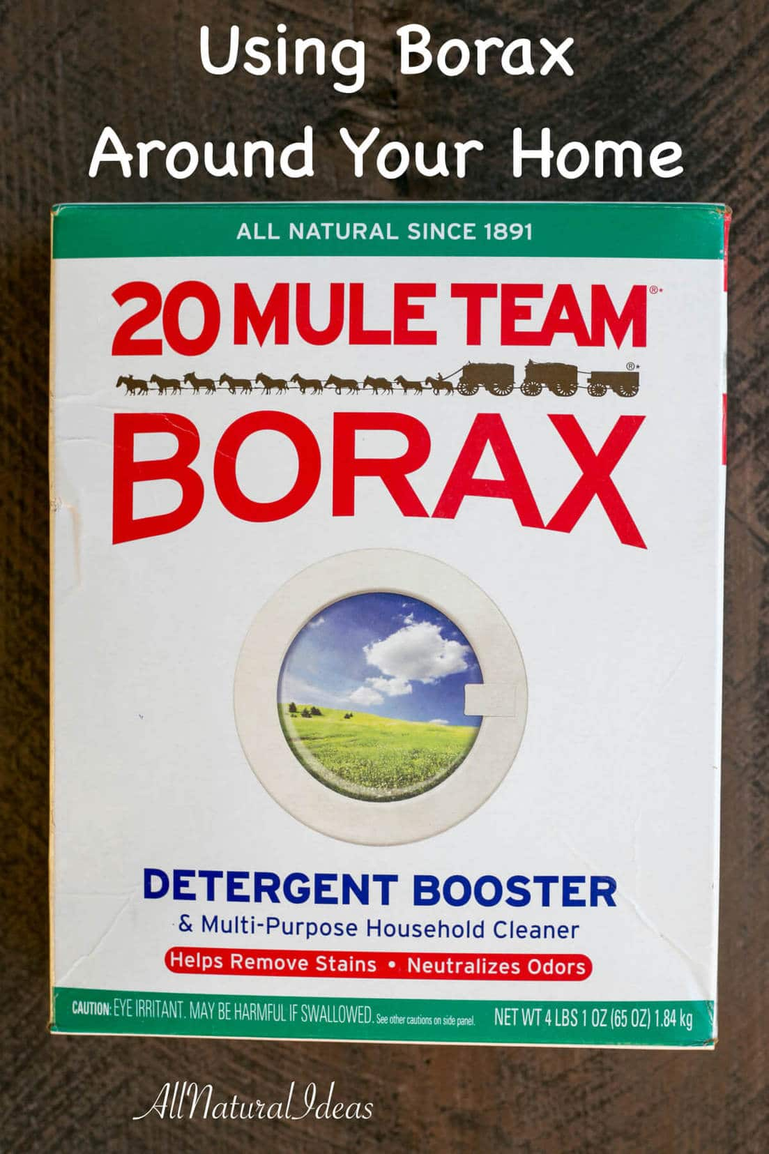 borax home uses