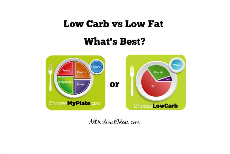 Are you confused about what nutritional diet is best for overall health? Let's take a look at low carb vs. low fat diets as each has healthy benefits.