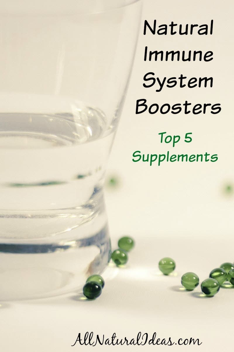 Natural immune system boosters can be taken to prevent illness or speed up recovery when sick. Here's a list of the top 5 supplements.