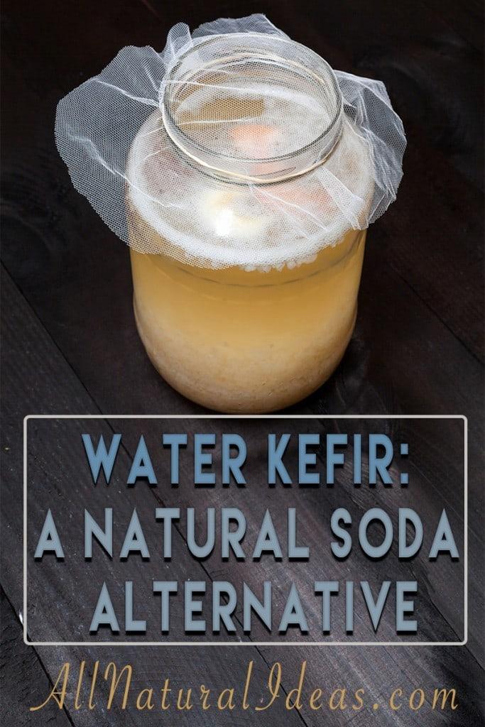 Water kefir natural soda alternative