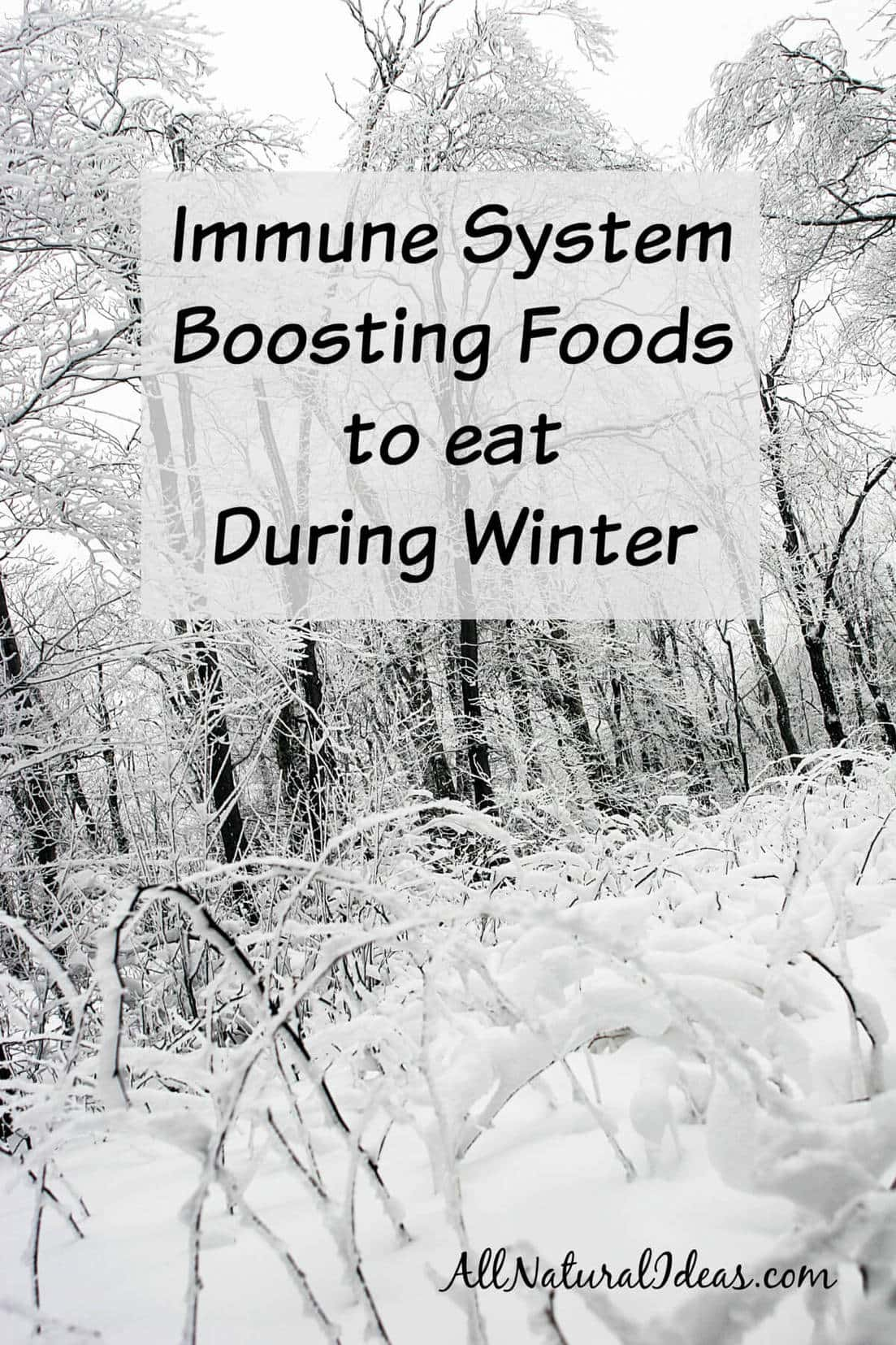 Immune system boosting foods to eat