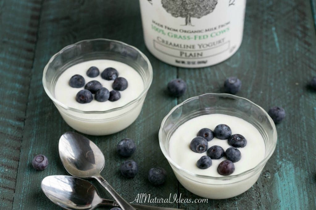 A bowl of low carb yogurt with blueberries