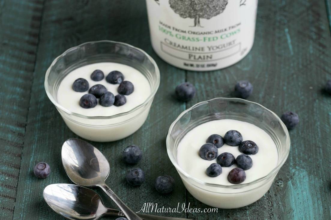 Low carb diets call for foods to be low in carbohydrates. Labels on yogurt depict them as being high carb. Is there a low carb yogurt option? | allnaturalideas.com