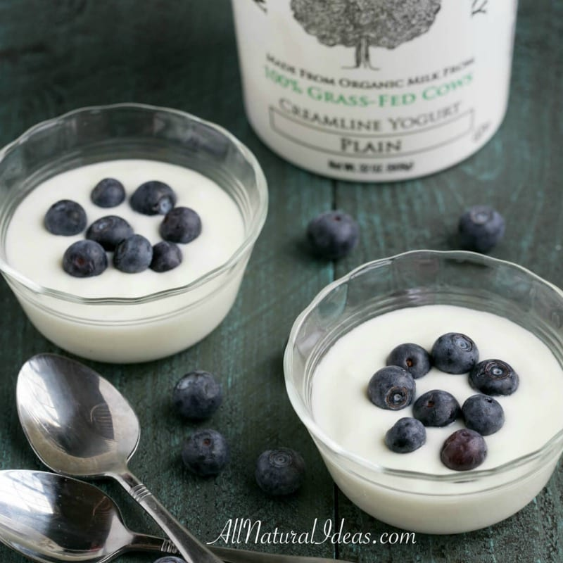 Low Carb Yogurt Options for a Keto Diet