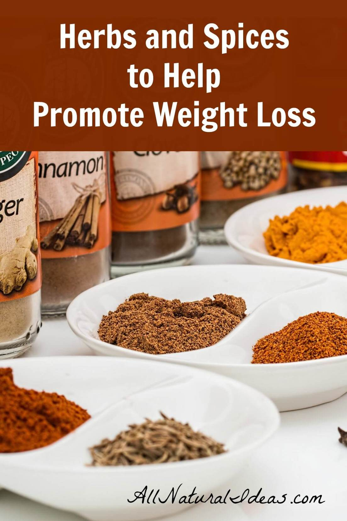 Exercising? Eating fruits and vegetables? Still struggling to lose weight? Try adding natural weight loss herbs and spices to help shed extra pounds!