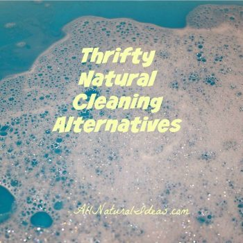 Thrifty Natural Cleaning Alternatives