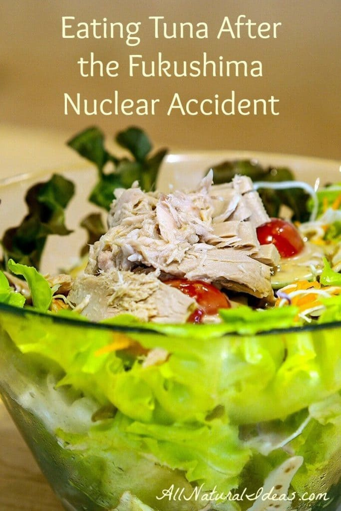 Wondering if the tuna you eat is safe? Does your tuna have harmful elements? Read on about eating tuna after Fukushima disaster. | allnaturalideas.com