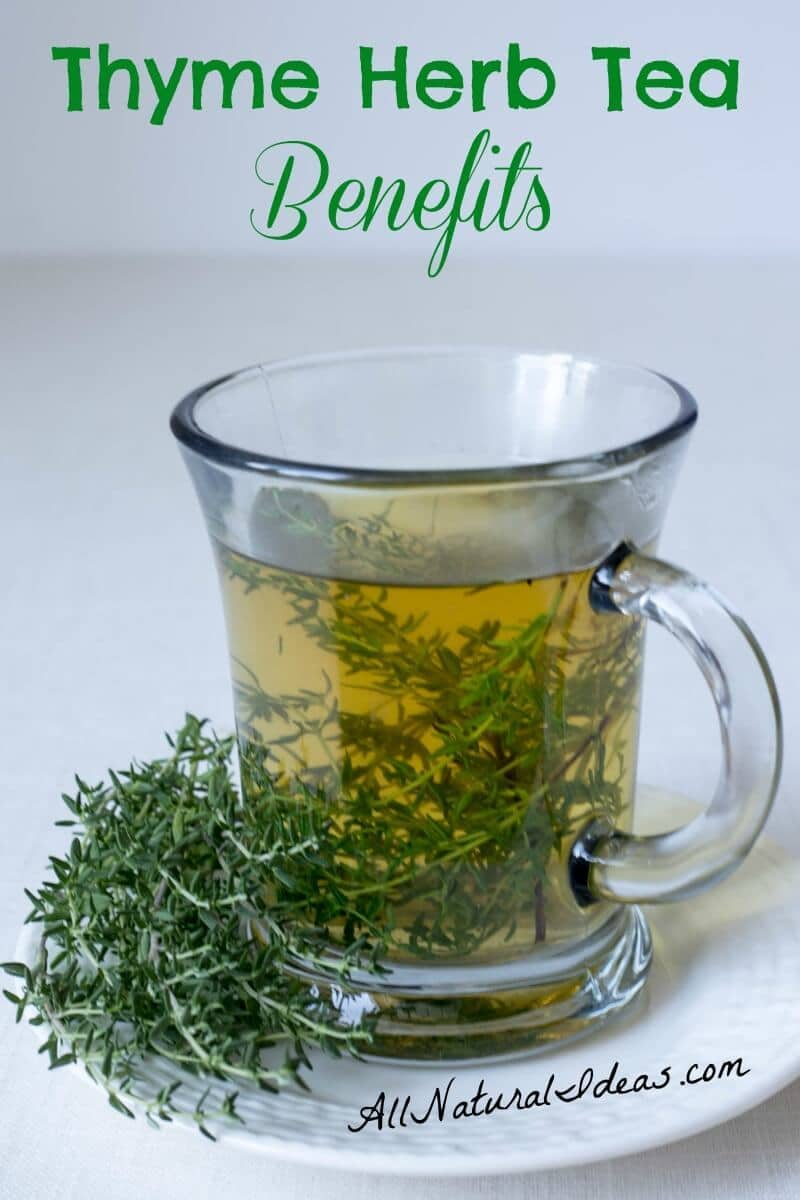 Thyme herb tea benefits and how to make it