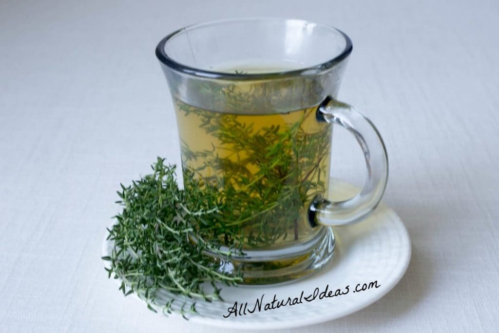 The thyme herb tea benefits have been known for ages. Drinking this magical tea may provide relief for many ailments. Make the switch from coffee! | allnaturalideas.com