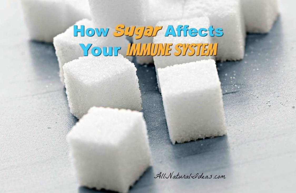 The sugar immune system relationship