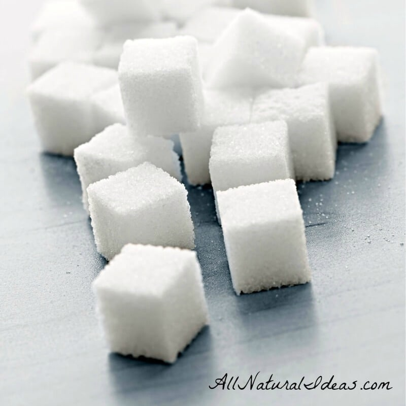 What's the Sugar Immune System Relationship?