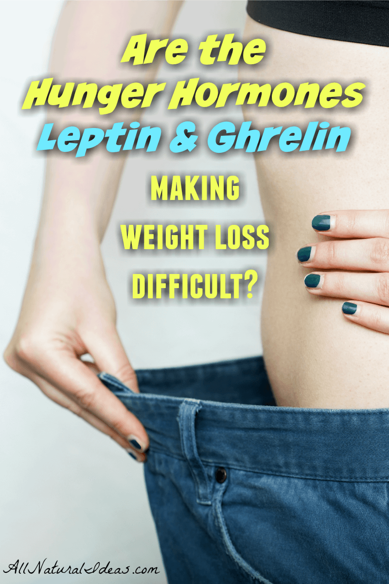 Hunger hormones leptin and ghrelin can make weight loss difficult. Getting control of your hunger is important if you want to keep weight off. | allnaturalideas.com