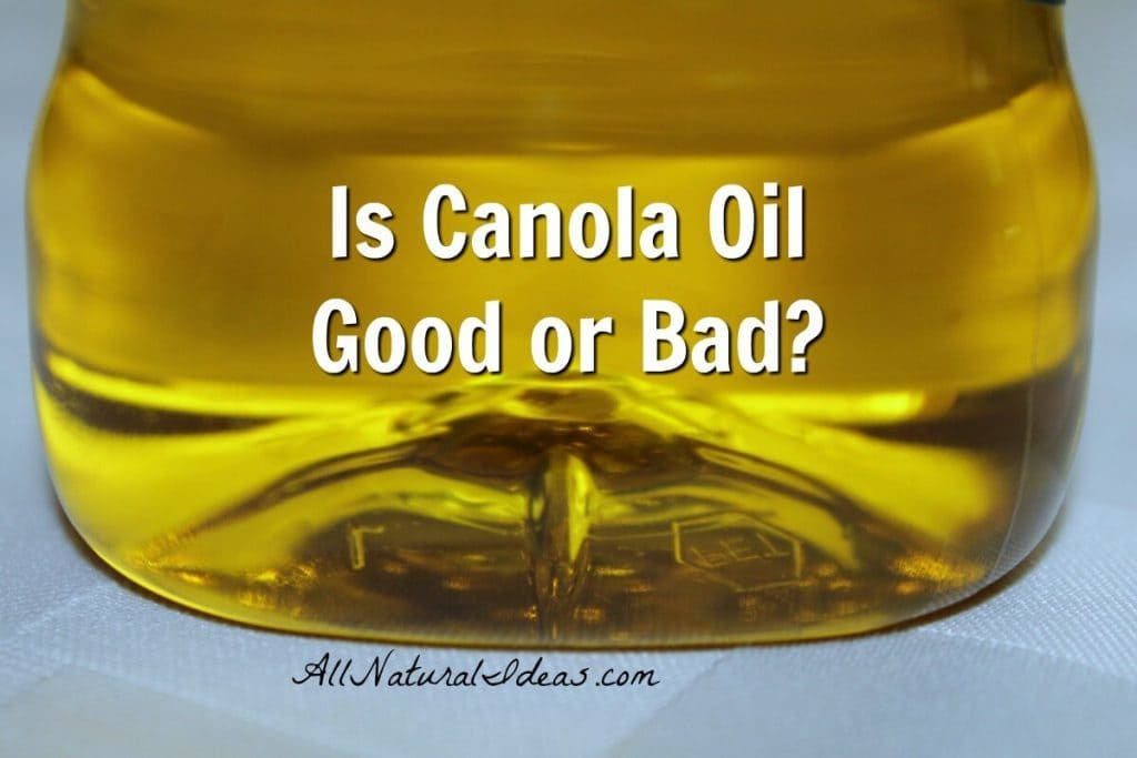 Canola is low in saturated fats, but is canola oil bad or good for your health? Let's take a look at the canola oil health benefits.