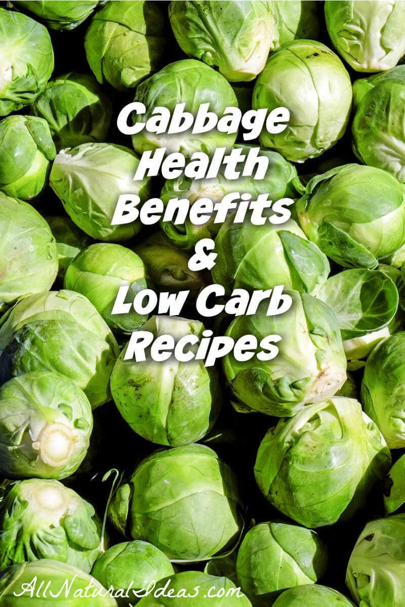 Vegetables are an important part of any diet. For those eating low carb, cabbage is a terrific choice. The cabbage health benefits make it hard to beat. | allnaturalideas.com