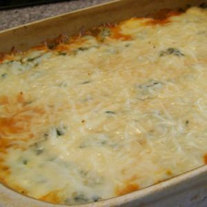 LOW CARB YUM NO NOODLE SPINACH MEAT LASAGNA 100_7410-e1319118093204
