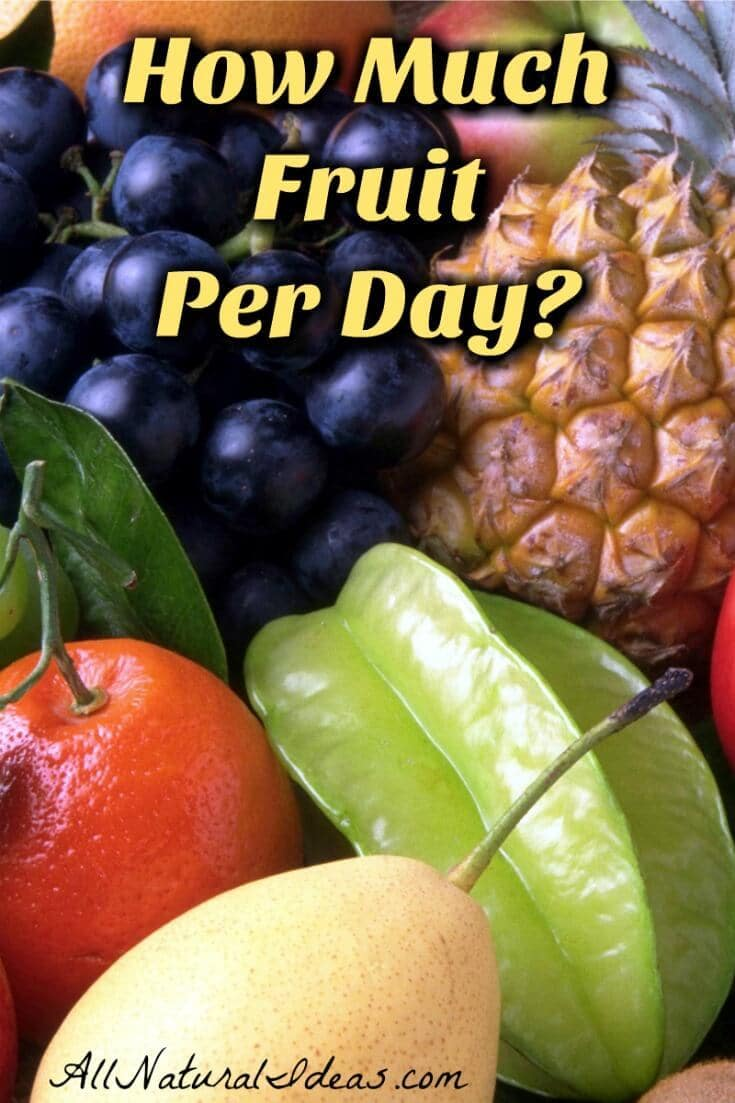 How much fruit per day is okay? Too much fruit can be a concern for those trying to lose weight on low carb or diabetics controlling insulin with diet. | allnaturalideas.com
