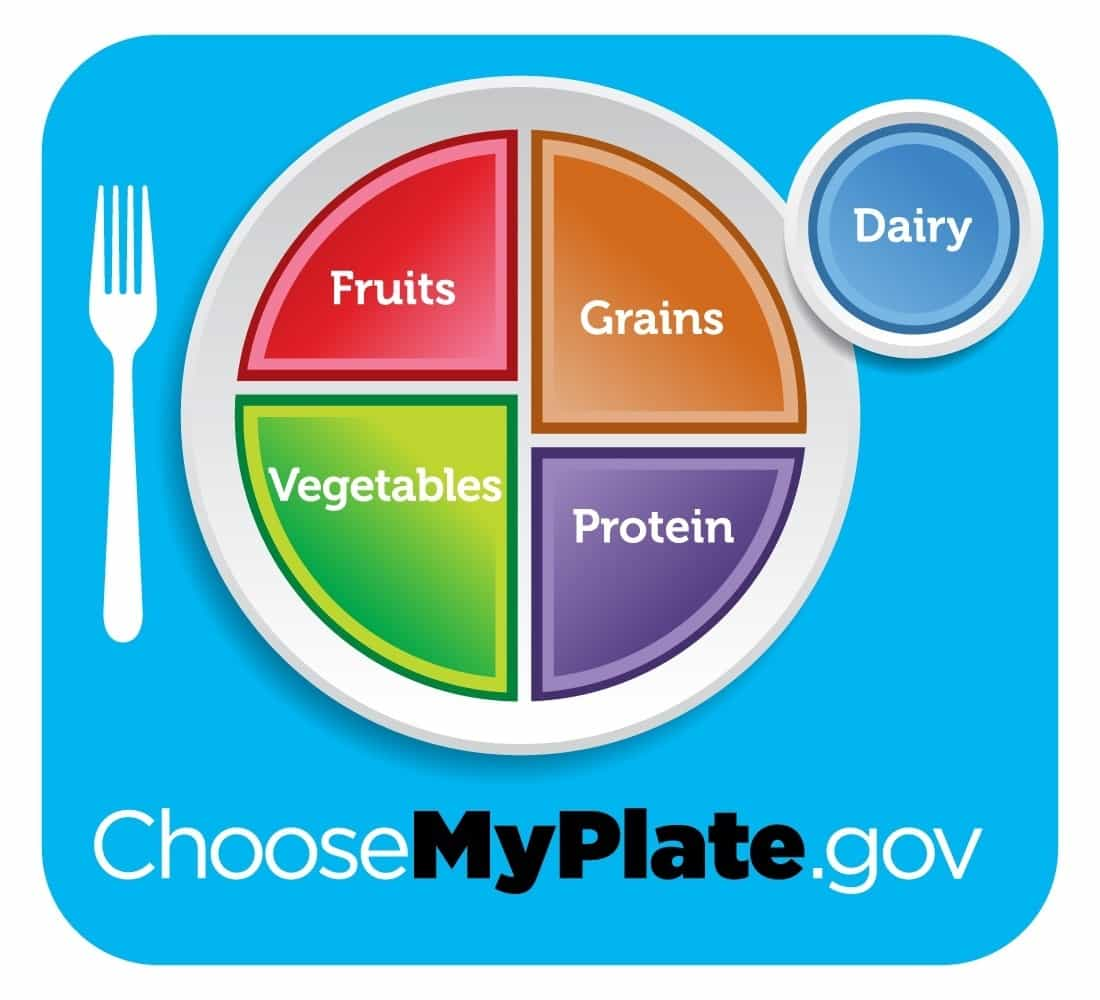 Biggest maintream nutrition lies My Plate