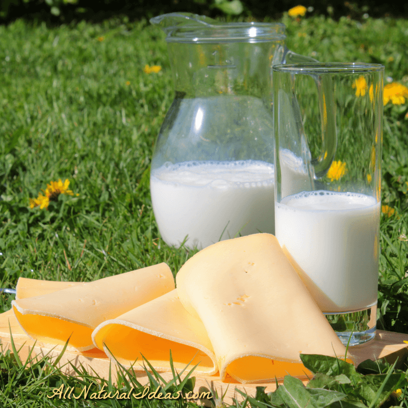 Is Dairy Good for You? Or, Are Dairy Products Bad?