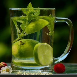 Detoxing your Body - How to Detox