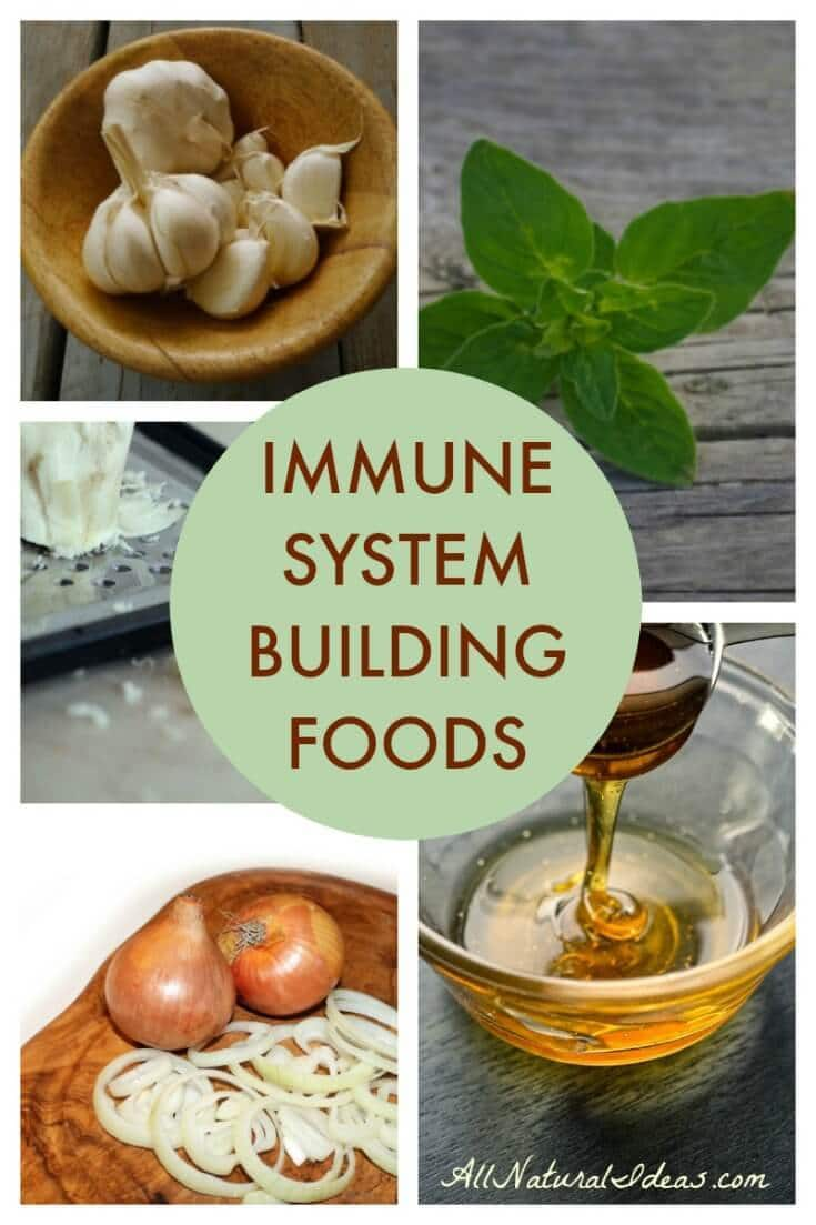 Eating foods to strengthen immune system may help prevent illness during cold and flu season. Why not incorporate these foods into your daily meals? | allnaturalideas.com