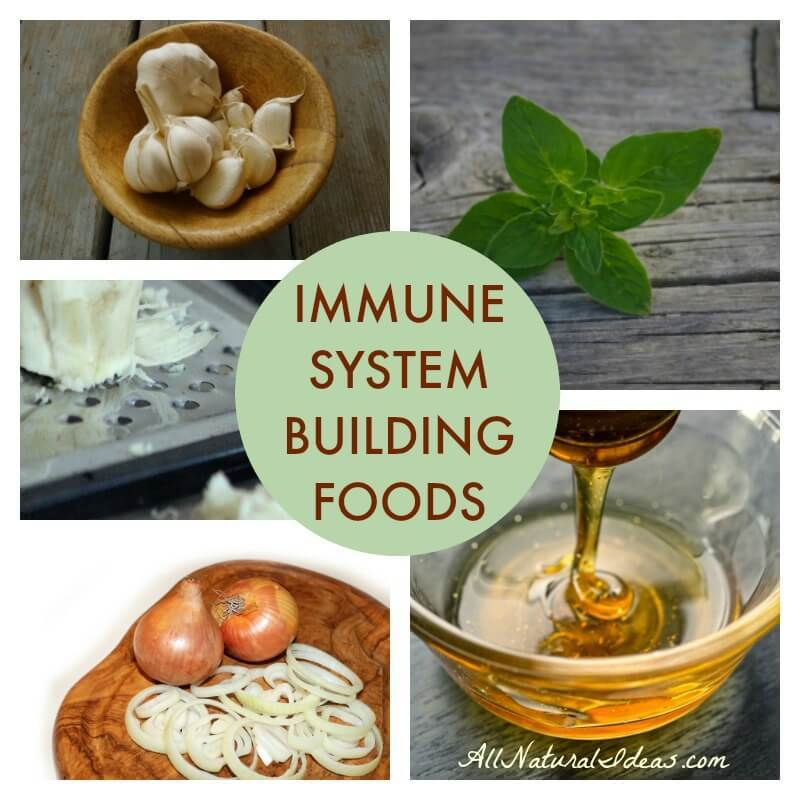 Foods to strengthen immune system during cold season