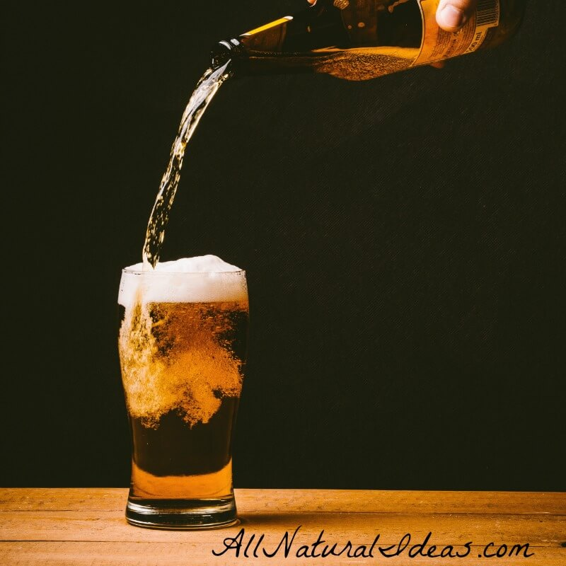Best Low Carb Beers to Keep You on Track