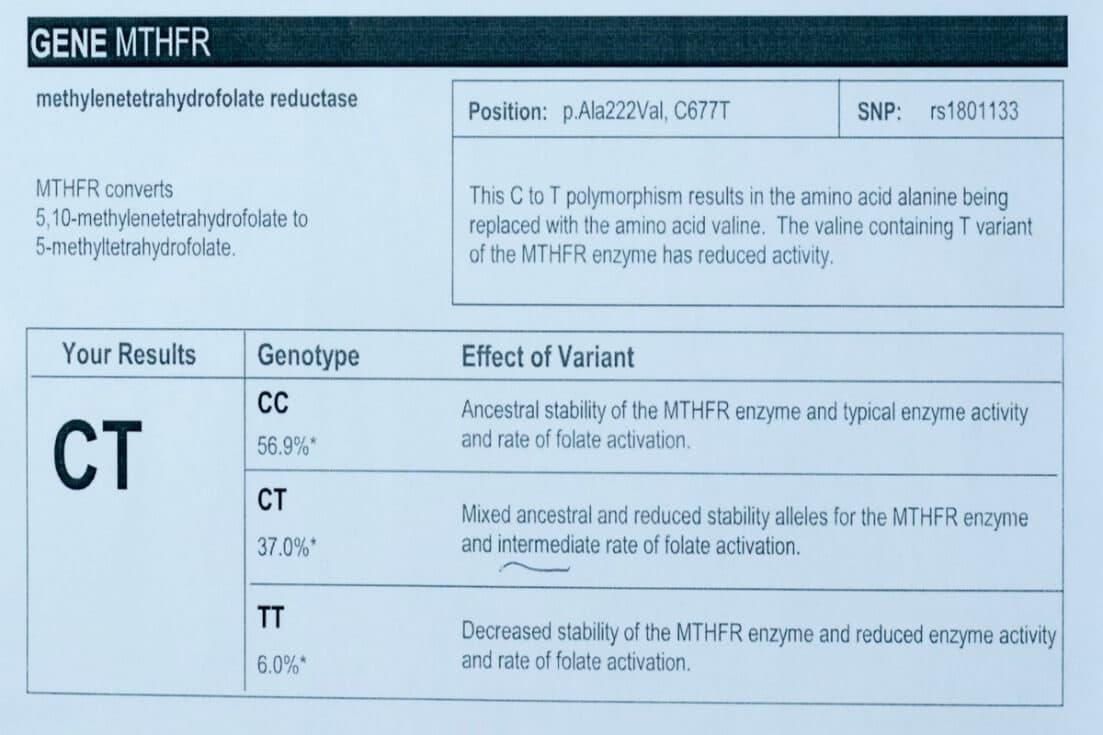 MTHFR gene mutation test info 1
