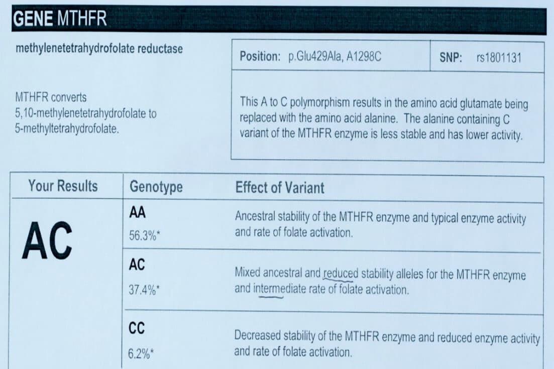 MTHFR gene mutation test info 2