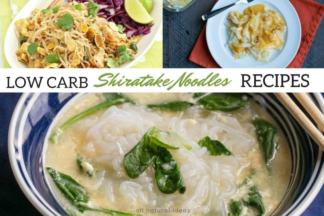 Low carb shirataki noodles recipes