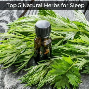 Top 5 Natural Herbs for Sleep to Relieve Insomnia