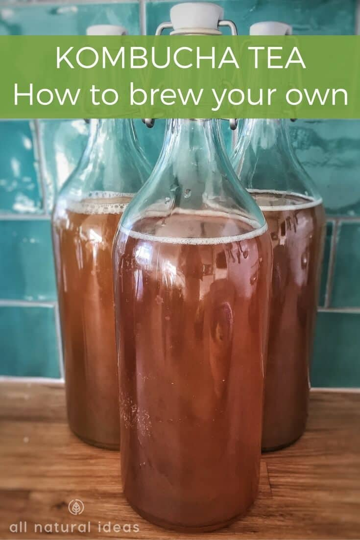 Kombucha recipes to brew your own