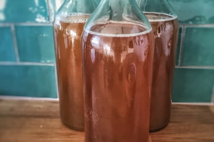 Kombucha recipes for brewing your own tea