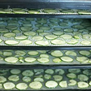How to Dehydrate Meat, Vegetables, and Other Foods