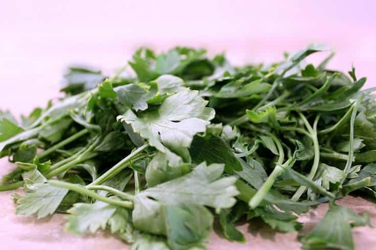 Parsley tea for UTI