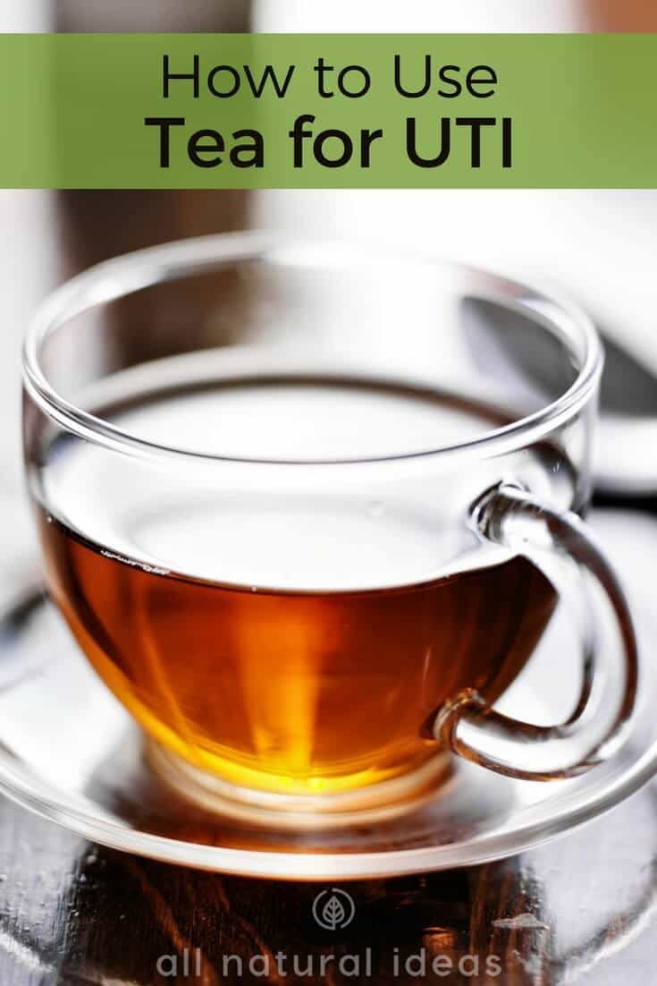 How to use tea for UTI