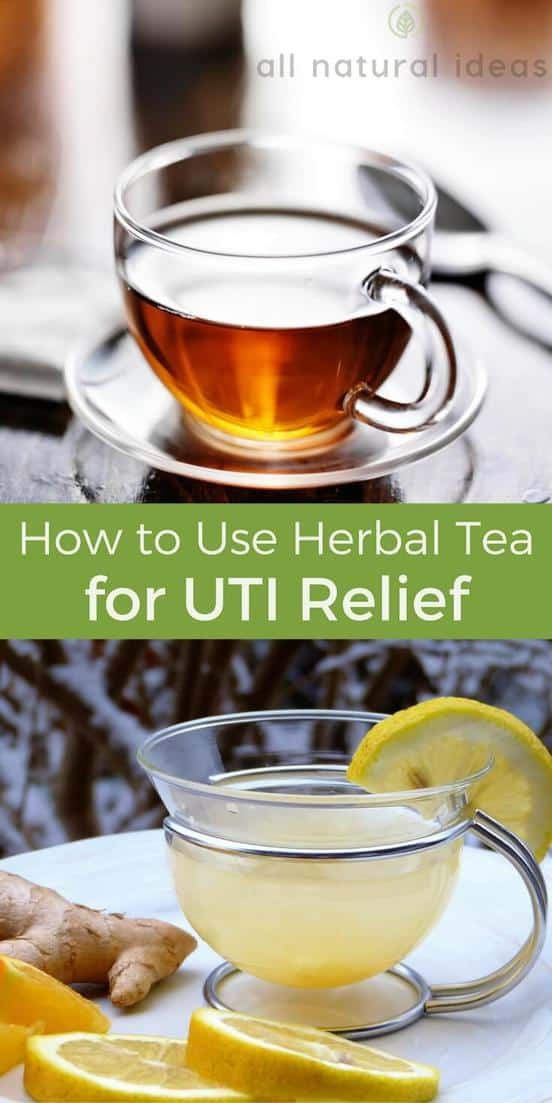 Can herbal teas really relieve a painful urinary tract infection? If so, what's the best tea for UTI to drink? | allnaturalideas.com