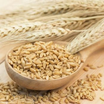 Beta Glucan Cancer Prevention: Does it Work?