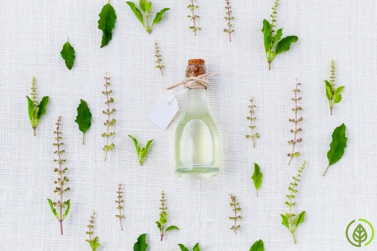 Essential oils for inflammation have been used for centuries. But it's only relatively recently that research studies have confirmed their use.