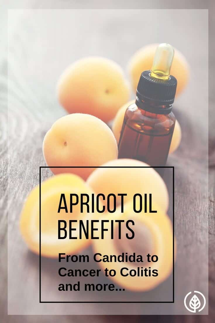 Apricot oil benefits include cancer prevention and treatment. It's also used as a massage oil and it's an ingredient in countless hair and beauty products, as well as homemade remedies.