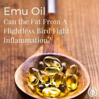 Emu Oil Benefits: Can It Fight Inflammation?